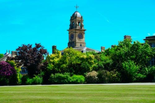 Foto profissional grátis de arrancar o parque, árvores, bedfordshire, céu azul