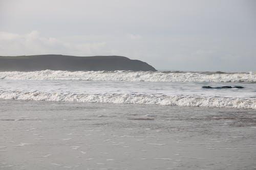 Gratis lagerfoto af delfiner # hav # cliffs # bølger