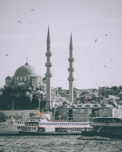 Flock of birds soaring over river and famous Hagia Sophia Grand Mosque located in Istanbul