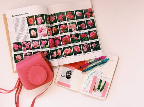 Free stock photo of blogging, bullet journal, feminine