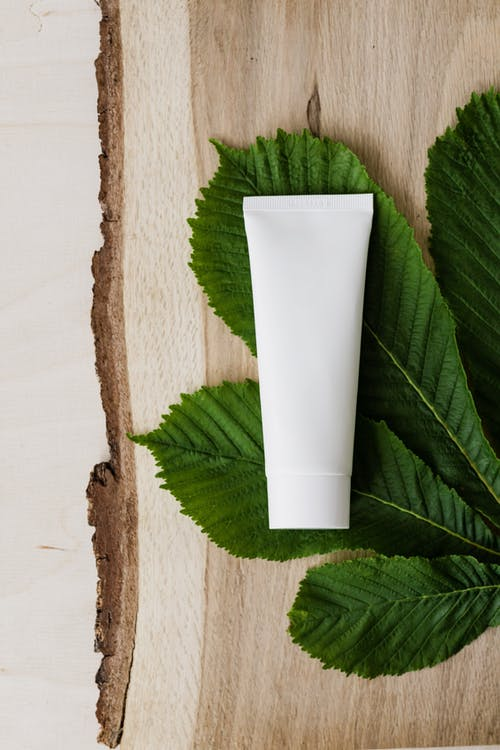 Blank cream tube on fresh chestnut leaf