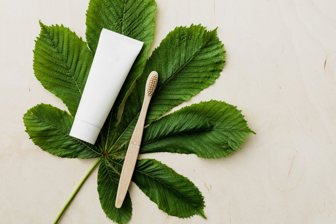 Organic toothpaste tube and bamboo toothbrush on fresh green leaf