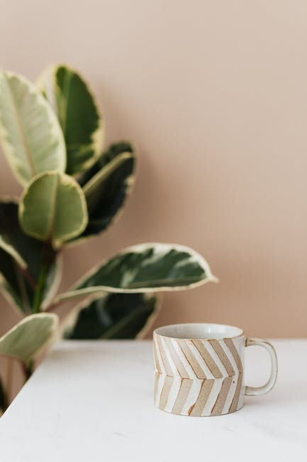Ceramic coffee cup on table next to ficus plant
