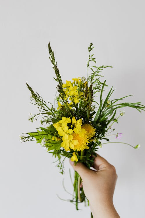 Crop person with small bouquet of rural flowers