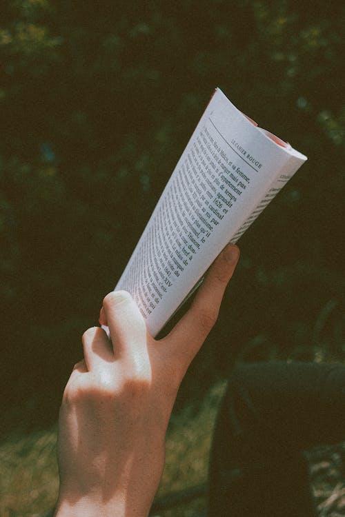 Unrecognizable person reading book in park