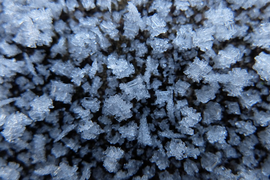 Free stock photo of frost, ice, low temperature