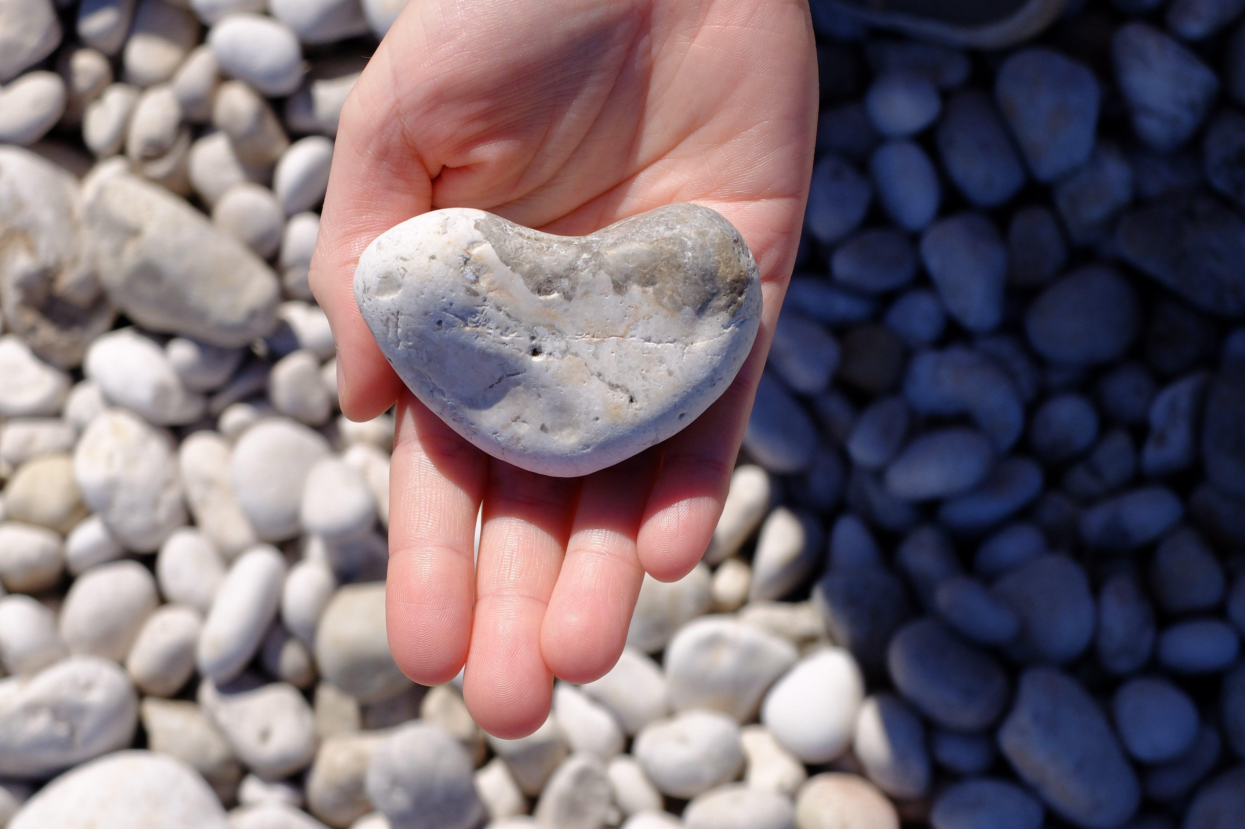 Free stock photo of hand, heart, stone