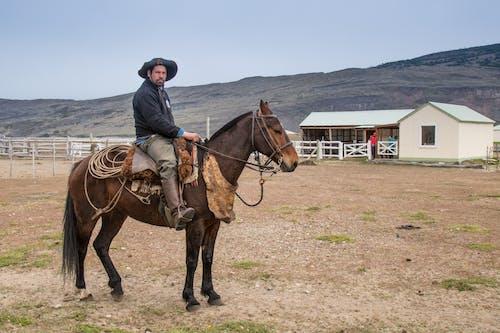 Ethnic man sitting on horse on ranch