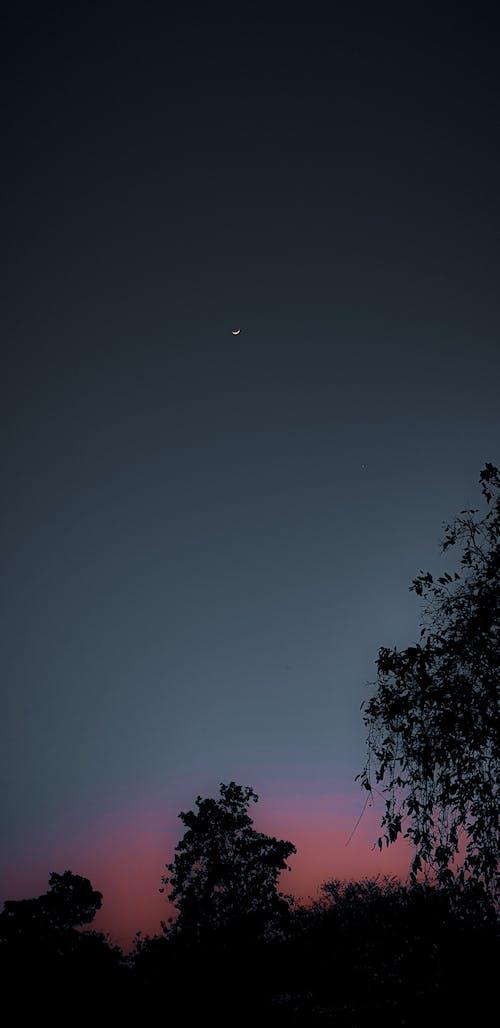 Základová fotografie zdarma na téma fotografie, fotografie přírody, krásná krajina, měsíční svit