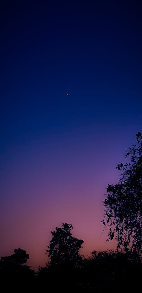 Základová fotografie zdarma na téma fotografie, fotografie přírody, měsíční svit, noční fotografie