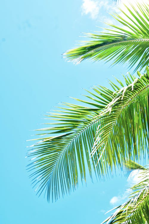 Free stock photo of background, beautiful sky, blue, blue sky