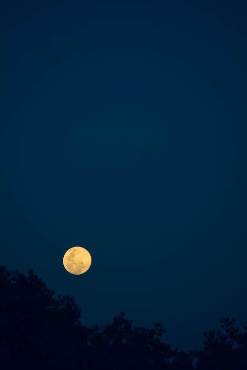 Free stock photo of astrophotography, blue, dark, evening