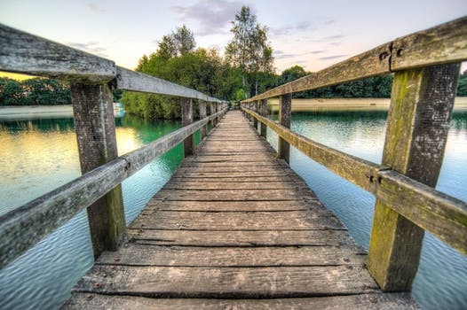 1000 interesting bridge photos pexels free stock photos