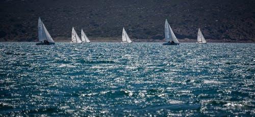 Free stock photo of navegacion, water