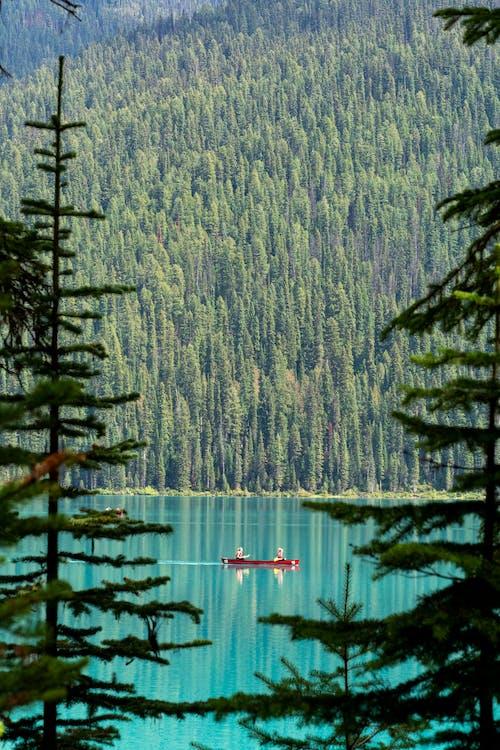 People Riding Kayak on Lake