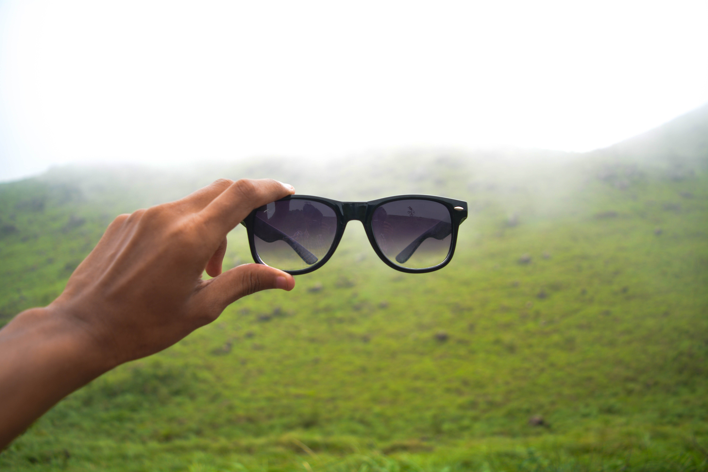 Free stock photo of green, mist, moody, shades