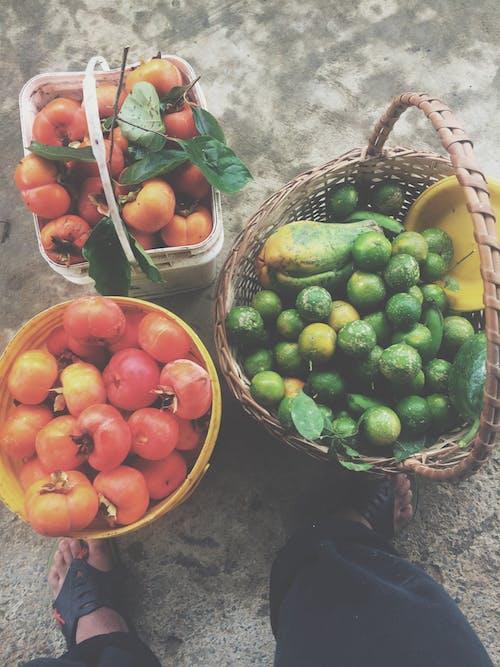 Free stock photo of alimentação, amante da natureza