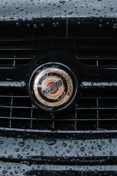 Black and Brown Car Grille