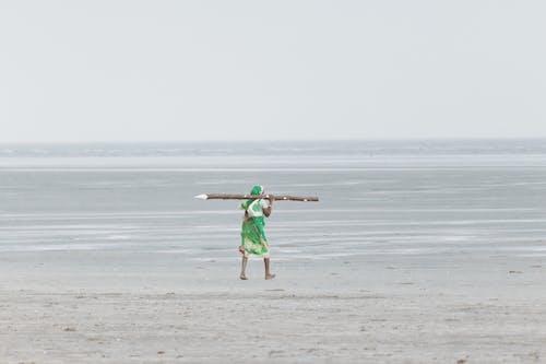 Photos gratuites de action, amusement, bord de mer, côte