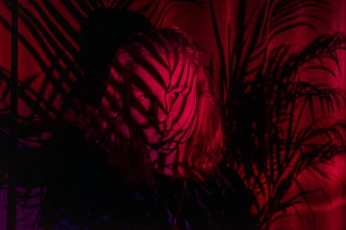 Young female with shadows of leaves of tropical plants on face standing under red neon illumination in darkness and looking at camera