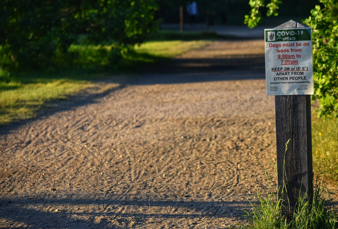 Warning for dogs owners during coronavirus pandemic in park