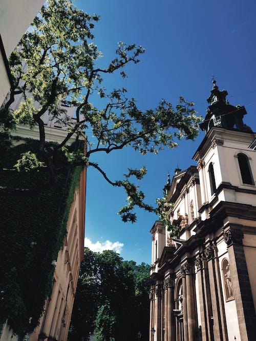Fotobanka sbezplatnými fotkami na tému architektúra, budova, budova kostola
