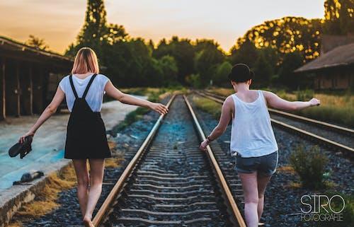 勝つ, 友情, 夏, 夏の雰囲気の無料の写真素材