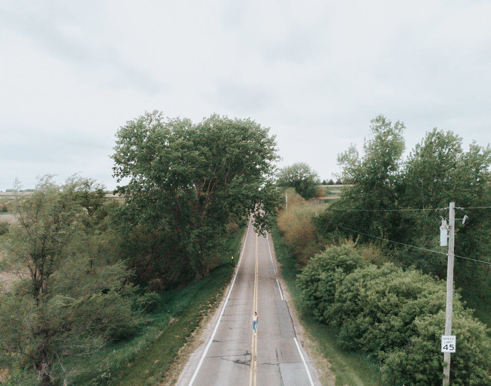 Gray Concrete Road Between Green Trees Under White Sky
