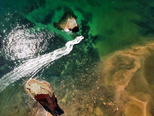 Fotos de stock gratuitas de agua, al aire libre, azul, bajo el agua
