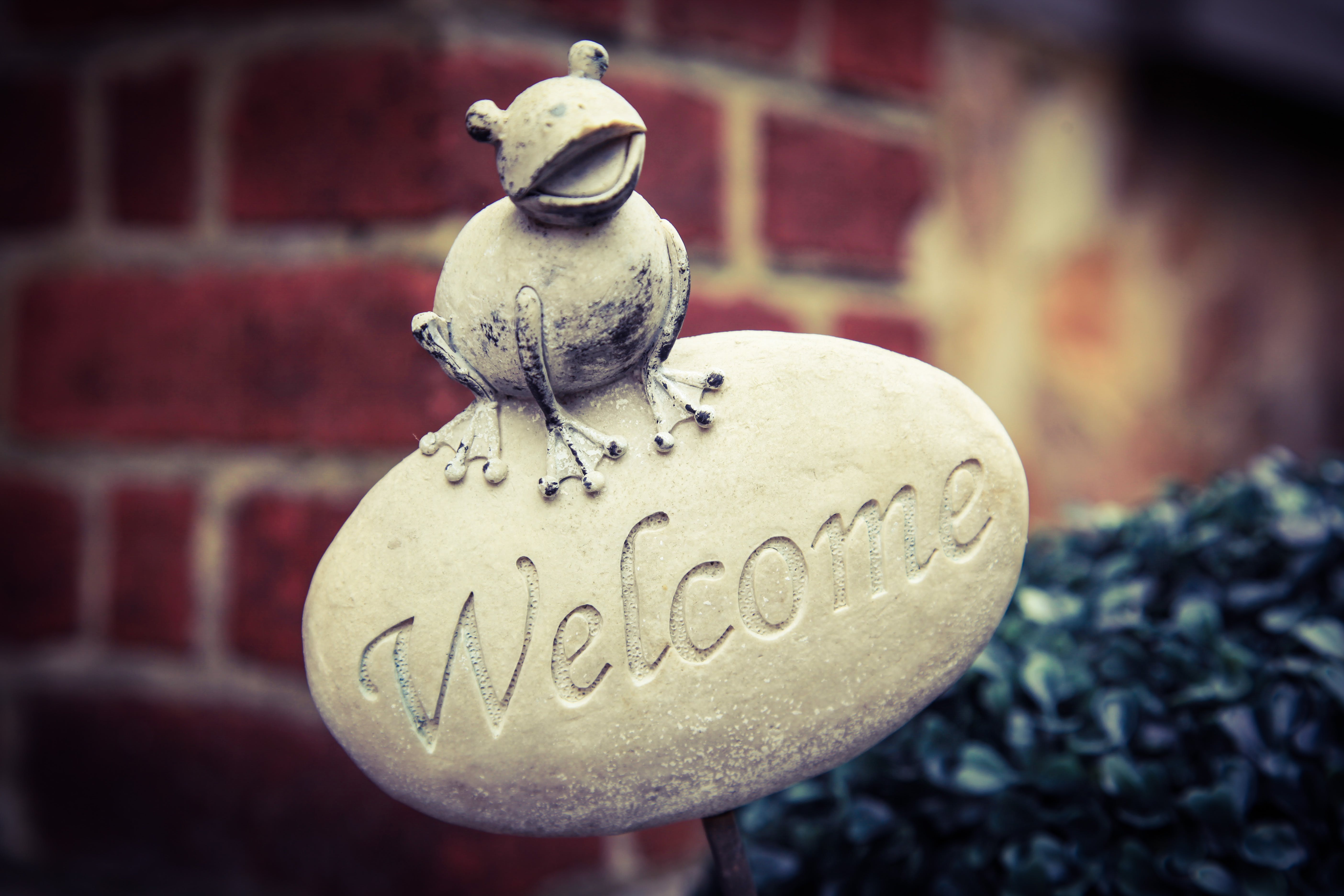 Free stock photo of welcome