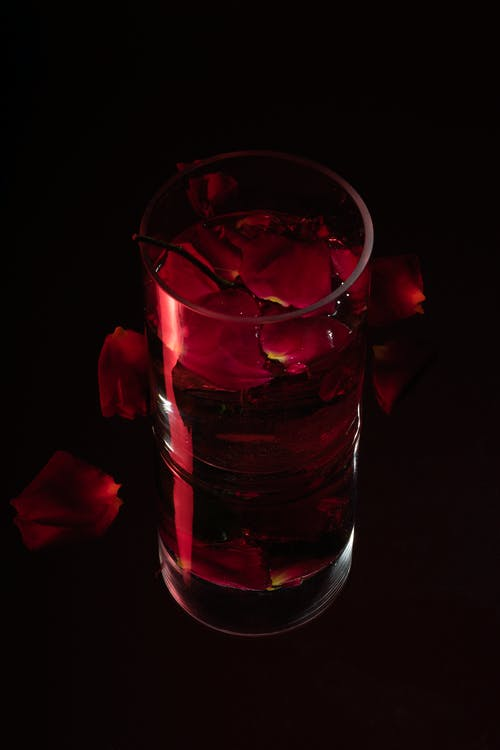 Free stock photo of black, red, rose, water