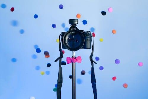 Free stock photo of adorable, blue, camera, fun