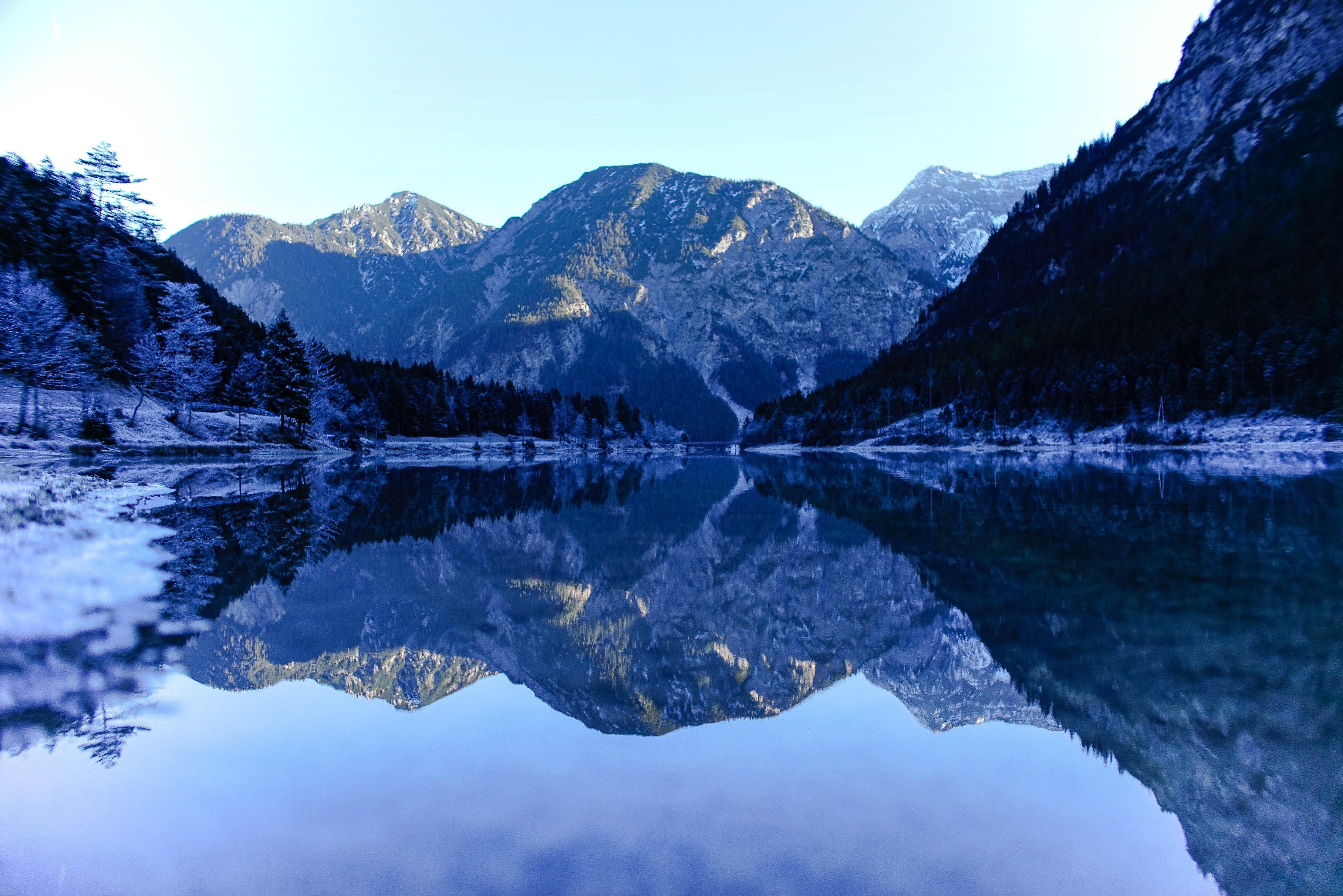 reflection of trees in lake  u00b7 free stock photo