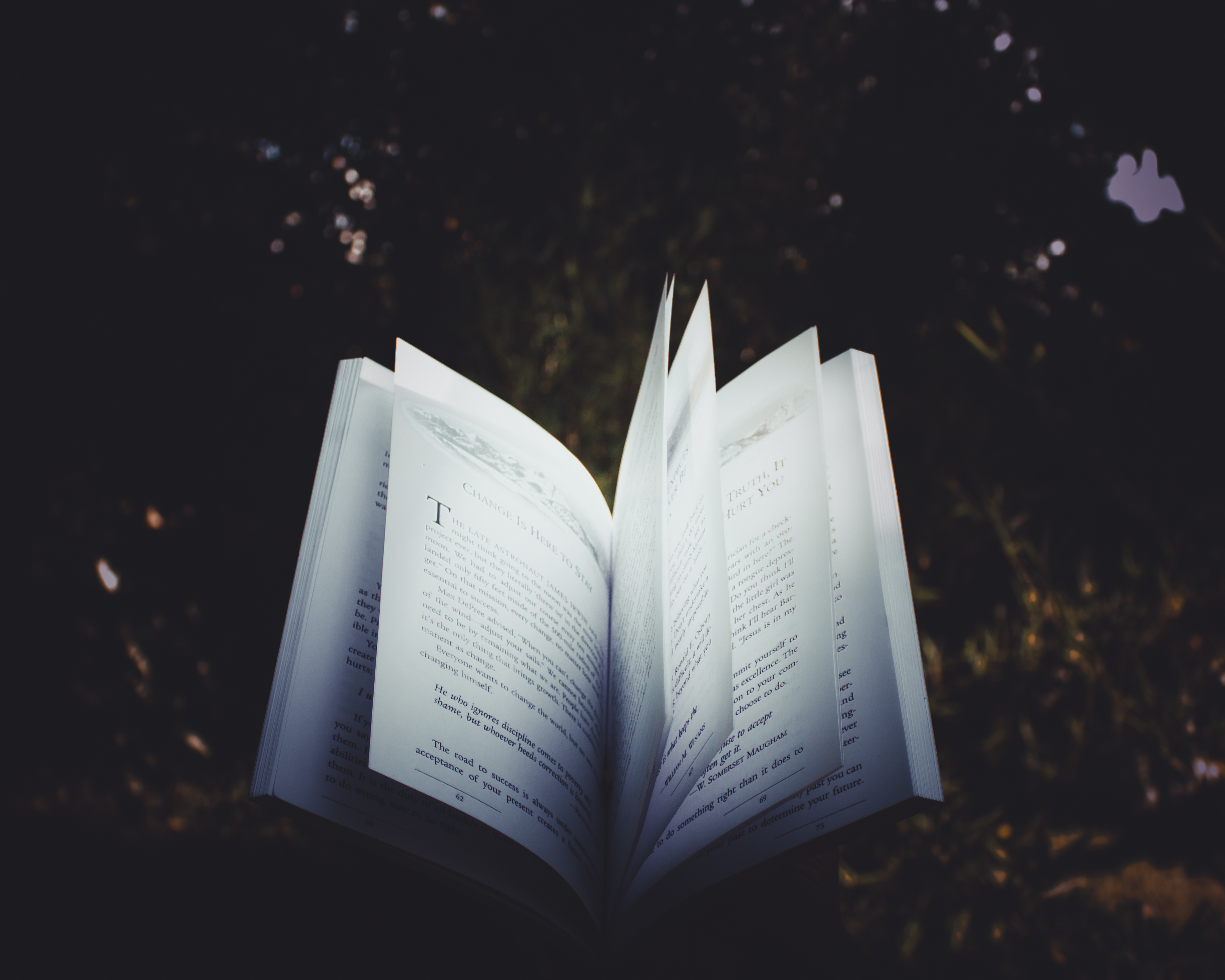 Free stock photo of school, research, book, book pages