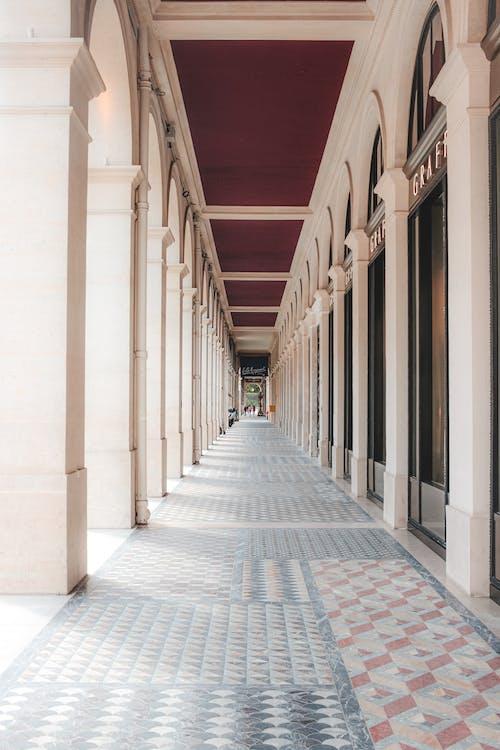 Immagine gratuita di architettura, arco, arcuato