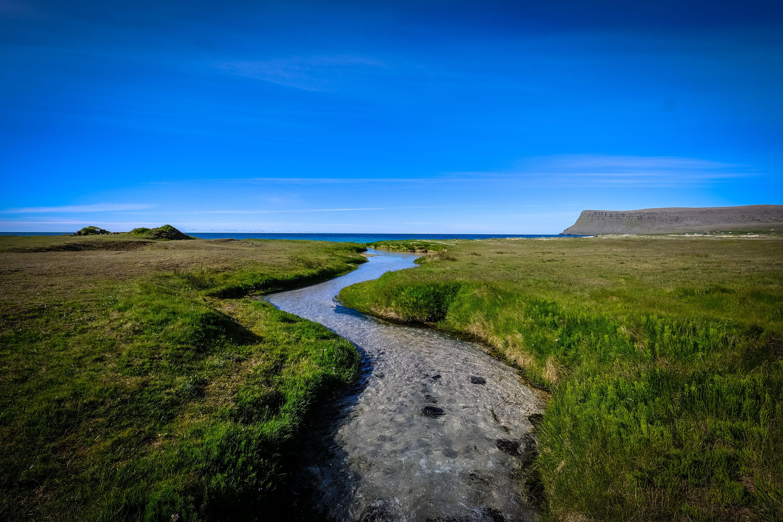 Základová fotografie zdarma na téma denní světlo, horizont, krajina, louky