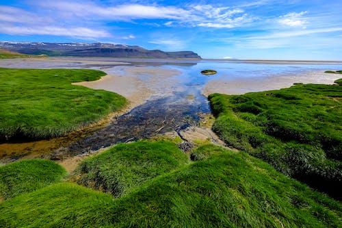 Бесплатное стоковое фото с вода, гора, дневной свет, живописный