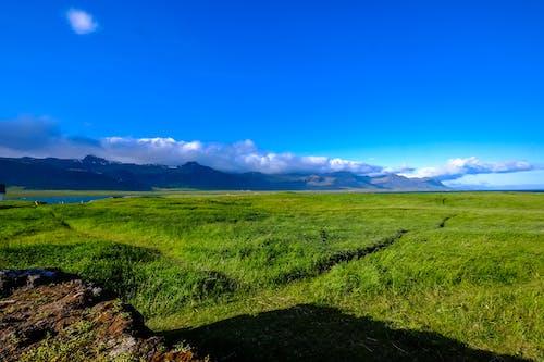 Kostnadsfri bild av åkermark, äng, bete, blå himmel