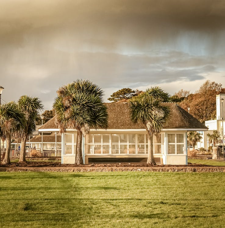 architektur, baum, bungalow