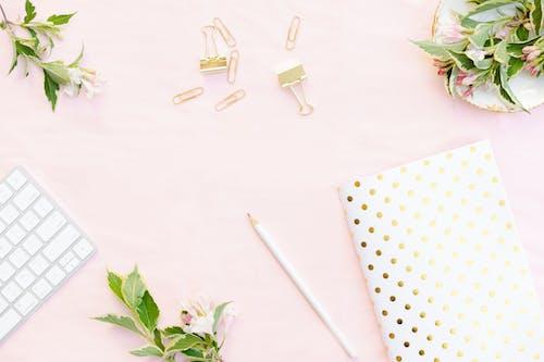 Darmowe zdjęcie z galerii z biały ołówek, dekoracja, flora, groszki