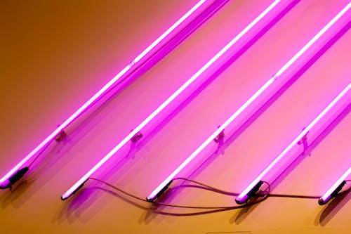 Ingyenes stockfotó neon, rózsaszín témában