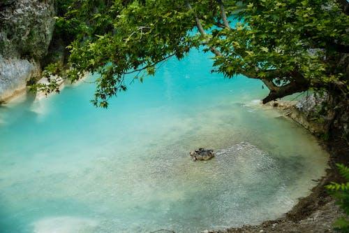 Free stock photo of Landscape. Sheerana