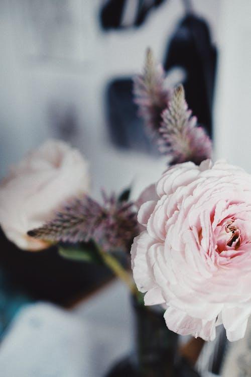 Bunch of light flowers in vase