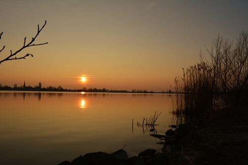 Free stock photo of calm waters, evening sun, golden hour, lakeside