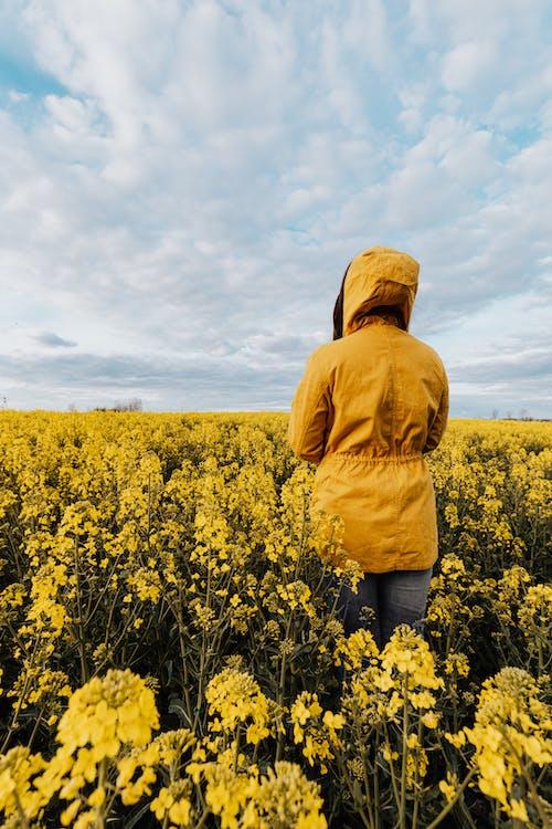 Darmowe zdjęcie z galerii z anonimowy, bez twarzy, cichy