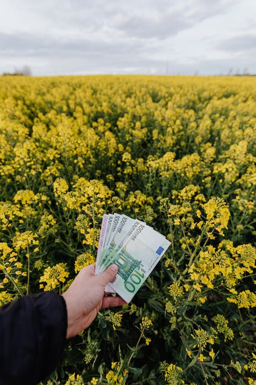 Unrecognizable man with money on field