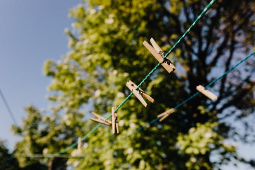 Set of clothespins on ropes under tree