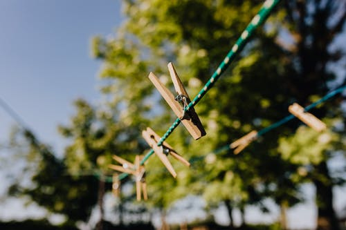 Clothesline with clothespins against green trees on daytime