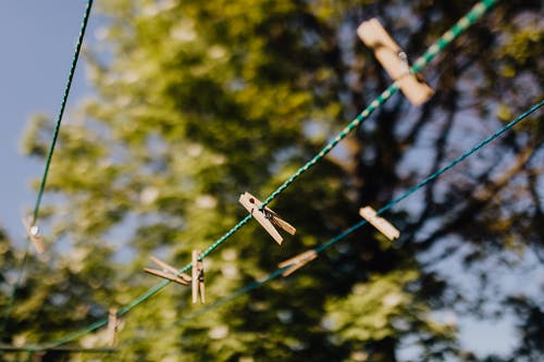 Clothespins attached to ropes near trees