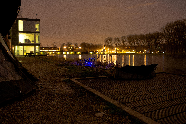 Free stock photo of carp fishing carpfishing night fishing - Carp wallpaper iphone ...